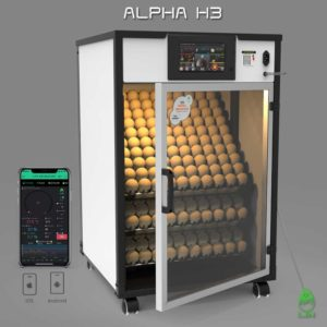Alpha H3