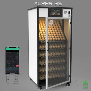 Alpha H6
