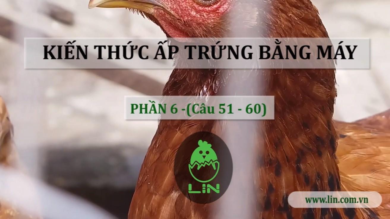 Kien Thuc Ap Trung Bang May Phan 6